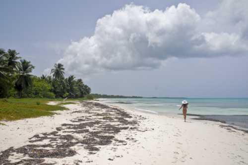 отдых в межводном крым на море: описание, как добраться, пляжи, отели